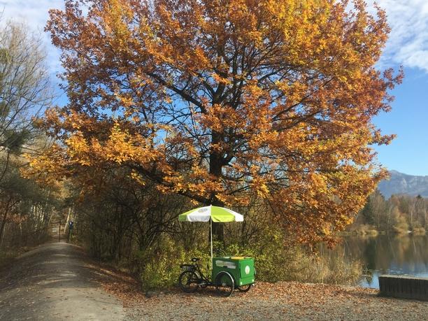 Velotal-Eventbike am Alten Rhein beim «Rohr» (ein möglicher Zielort der Velotal Foto-Schnitzeljagd)